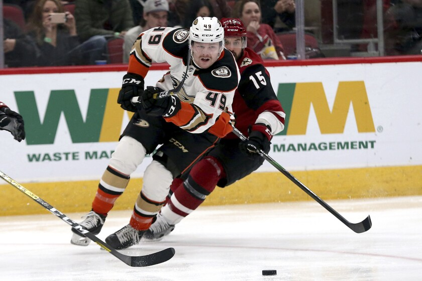 Ducks left winger Max Jones (49) chases the puck during the first period of a game against the Coyotes on Nov. 27 at Gila River Arena.