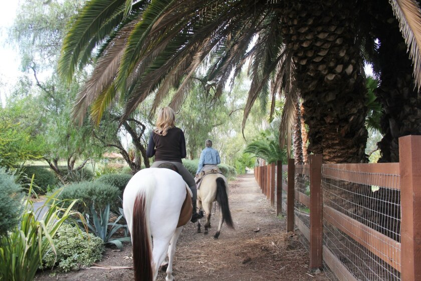 Barbara Kruer and Lisa Bartlett (on Snickers and Amber) ride the Rancho Santa Fe trails. Photos by Karen Billing