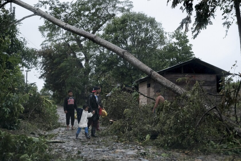 A fallen tree lies on the road in Nicaragua