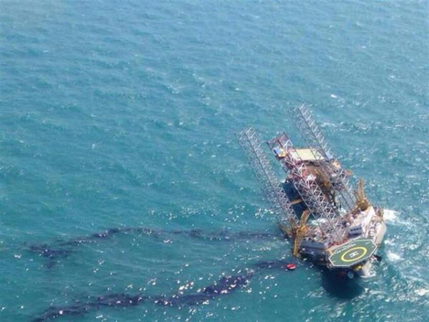 La organización Earthjustice anunció hoy que demandó a la Administración Trump por no realizar un estudio biológico sobre los daños que la industria de los hidrocarburos puede causar a los animales marinos en el Golfo de México. EFE/ARCHIVO