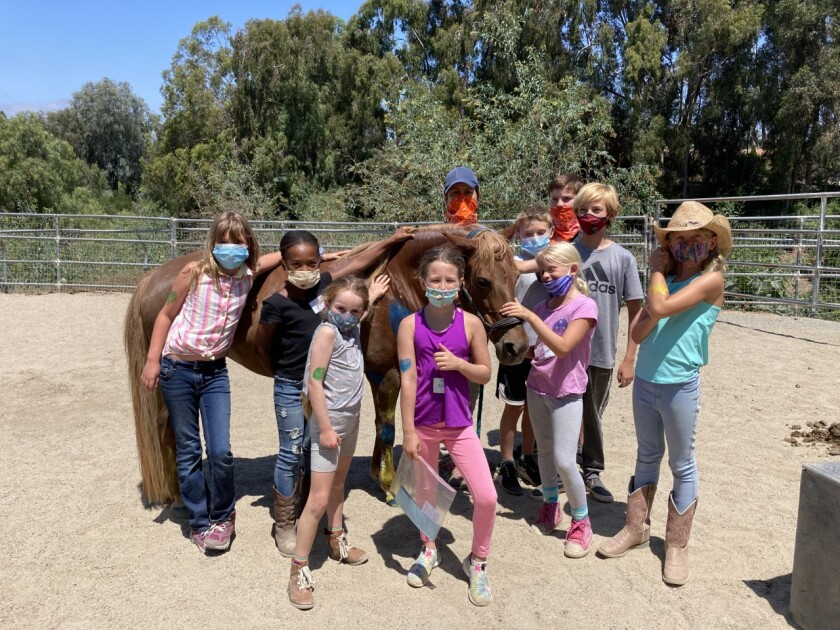 Participants at the recent Laughing Pony Rescue camp.