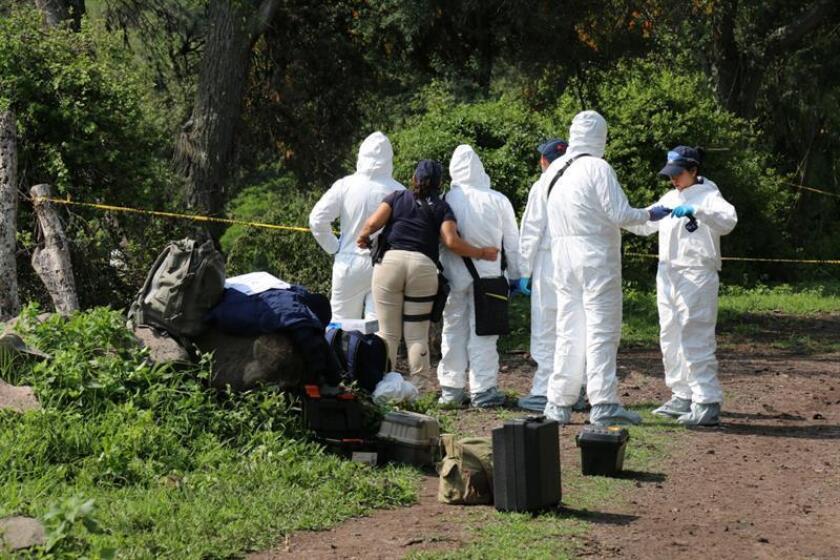 Los cuerpos de ocho hombres, con huellas de tortura y asesinados a balazos, fueron abandonados este viernes en una falsa patrulla, en zona costera del occidental estado de Michoacán, en el Pacífico mexicano. EFE/ARCHIVO