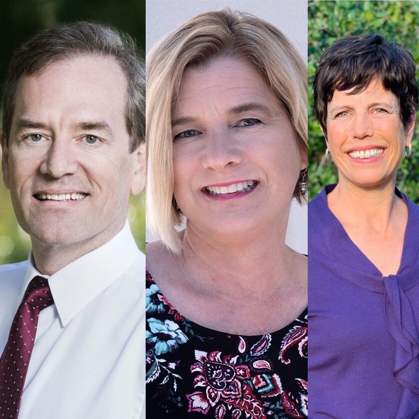 Candidates for SDUHSD Area 4 include Michael Allman, Amy Caterina and Jane Lea Smith.