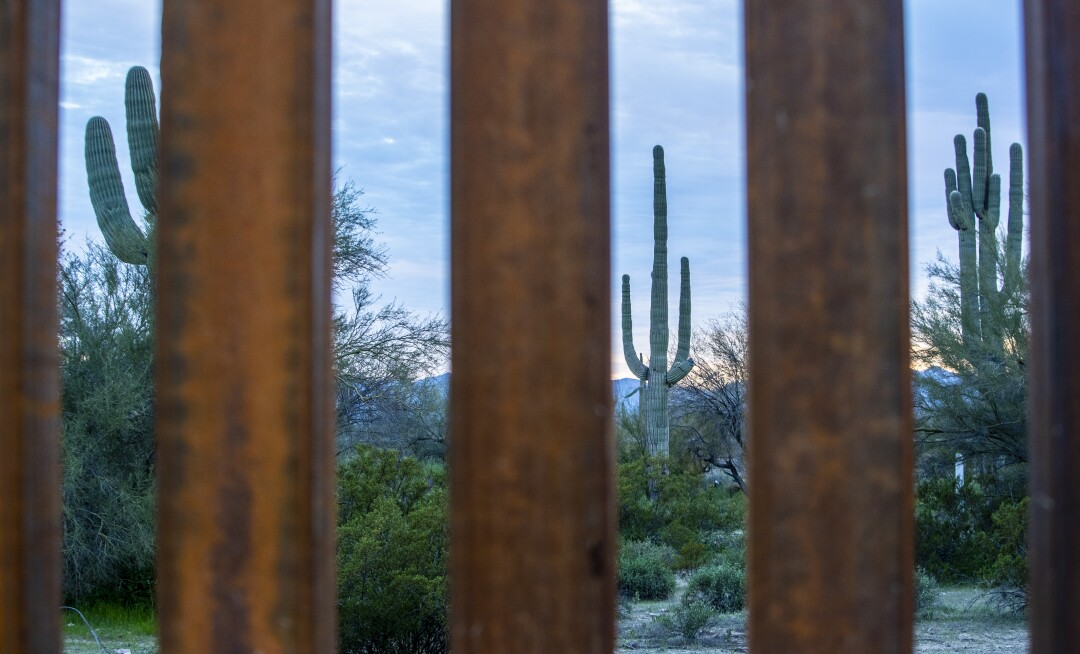 Saguaro cactuses on the Mexican side of the border are framed by the newly constructed border wall in Organ Pipe Cactus National Monument west of the port of entry in Lukeville, a small Arizona border town.
