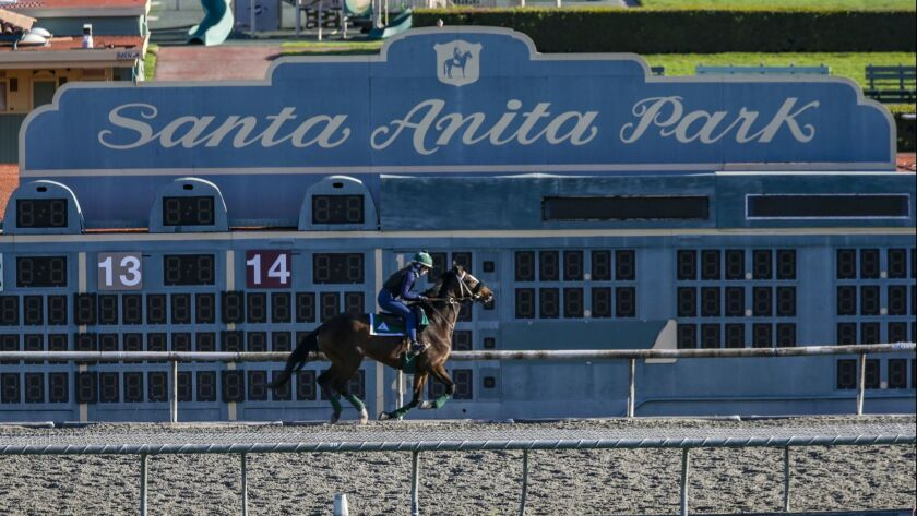 Op-Ed: Jane Smiley: The deaths at Santa Anita remind me why