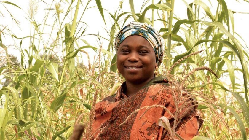 Nigerian farming