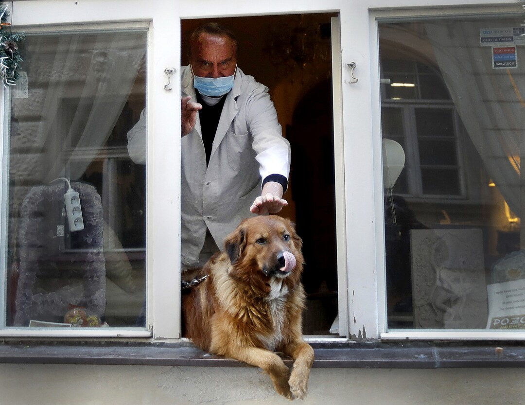 PRAGUE: A man pets a dog that sits in a window in downtown Prague, Czech Republic, on March 24.