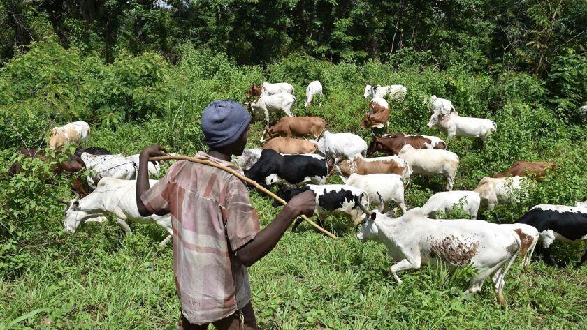 ICOAST-AGRICULTURE-FARMING