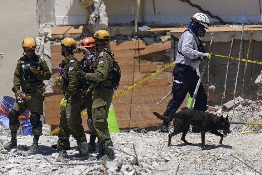 A dog aiding in the search walks past a team of Israeli search and rescue personnel, left, atop the rubble at the Champlain Towers South condo building, where scores of people remain missing one week after it partially collapsed, Friday, July 2, 2021, in Surfside, Fla. (AP Photo/Mark Humphrey)
