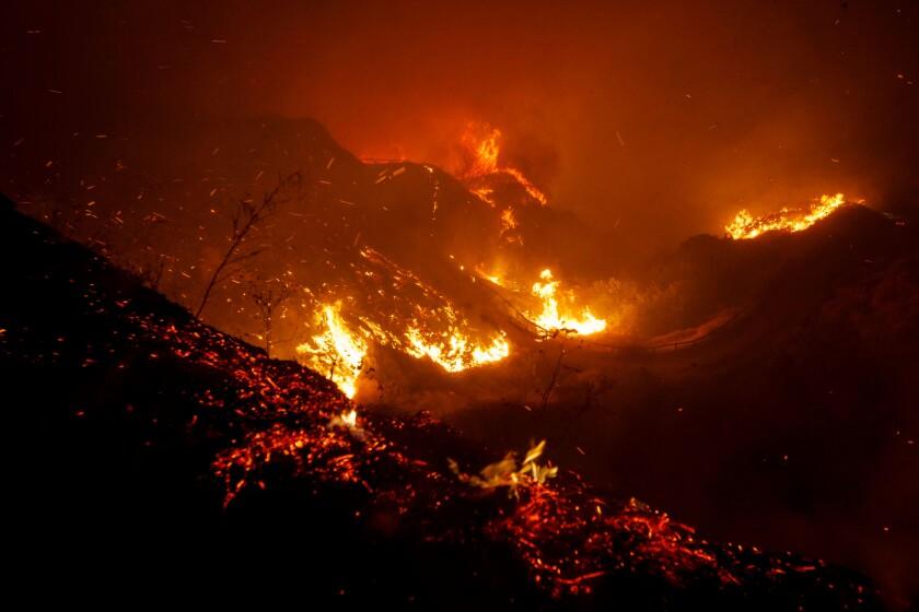 Saddleridge Wildfire