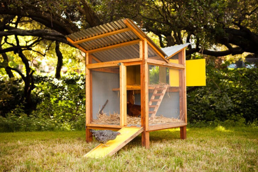 'Reinventing the Chicken Coop': DIY shelters for modern ...