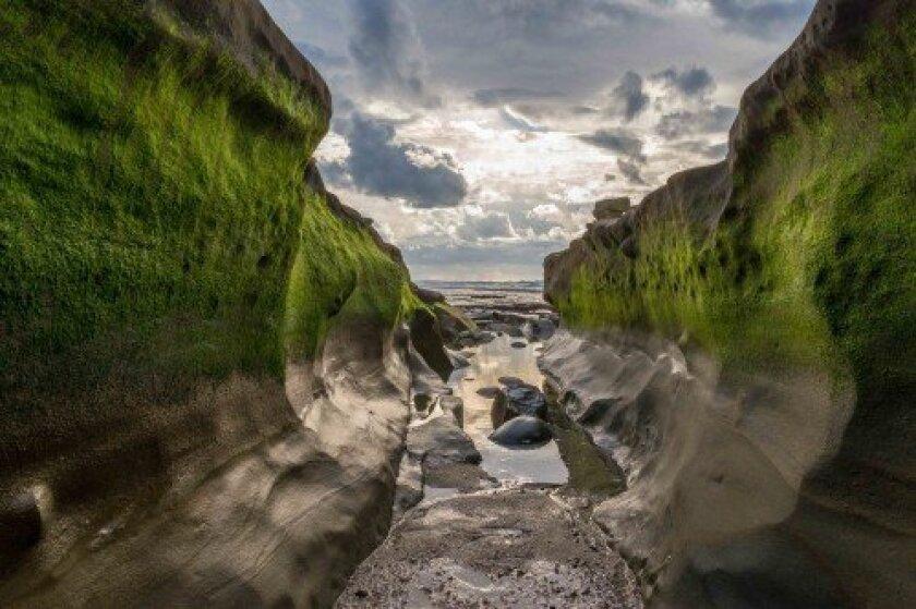 A fissure in the rocky shore at Hospitals Beach in La Jolla.