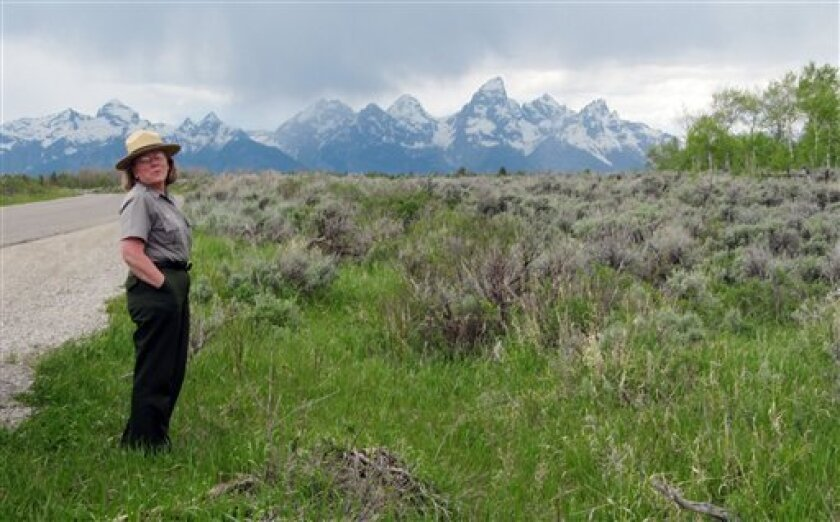 This June 24, 2010 photo shows Grand Teton National Park spokeswoman Jackie Skaggs standing on land the state of Wyoming owns inside Grand Teton National Park. Gov. Dave Freudenthal responded favorably Friday Nov. 5, 2010 to an Interior Department plan to buy state land in the park over several years, potentially ending an impasse that included a threat by Wyoming officials to sell the valuable property at public auction. (AP Photo/Mead Gruver)