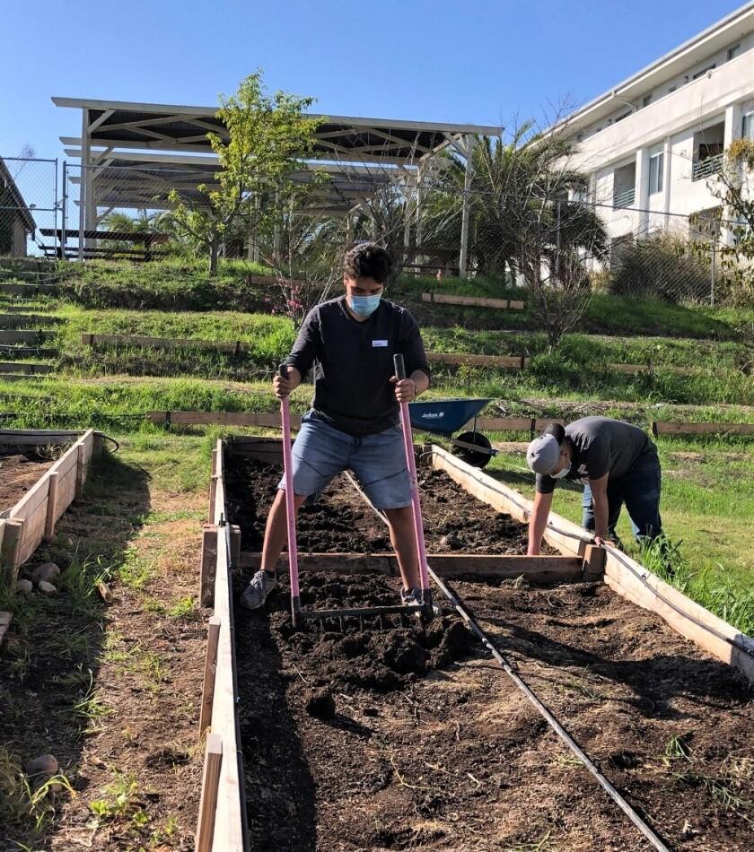 Students turning the soil at Urban Life Ministries farm.