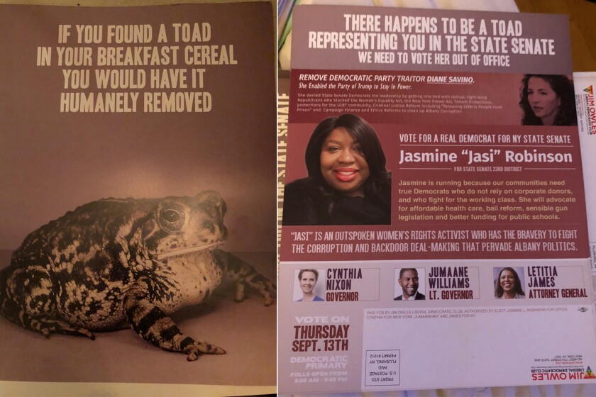 Front Page, left, of a mailer from the Jim Owles Liberal Democratic Club