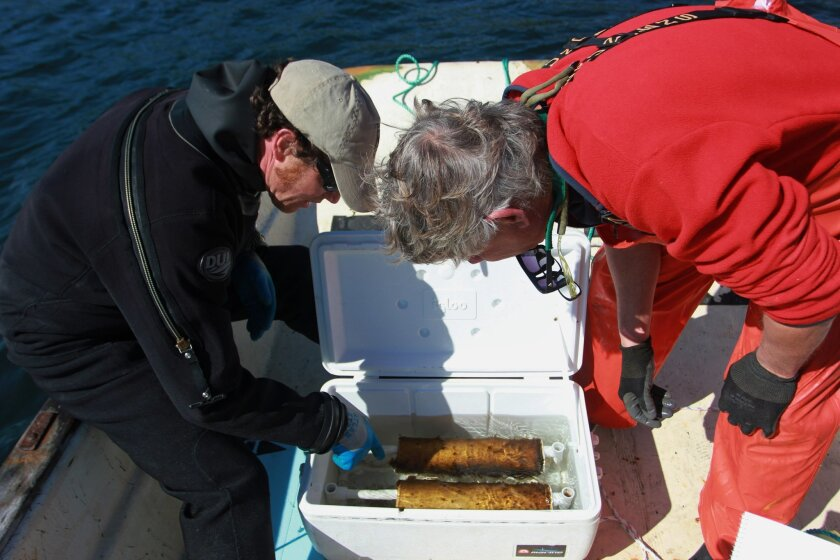 In this photograph taken April 8, 2016, ecologist Brian Allen, left, and scientist Joth Davis, of the Puget Sound Restoration Fund, inspect two spools holding twine full of young kelp in a boat on Washington state's Hood Canal. An experiment will test whether a seaweed farm can take up carbon dioxi