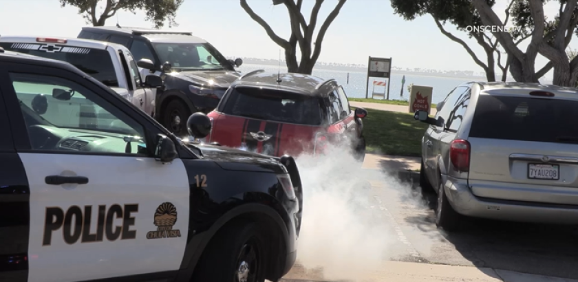 A driver jumped a curb and went through Bayside Park in Chula Vista while fleeing police Monday.