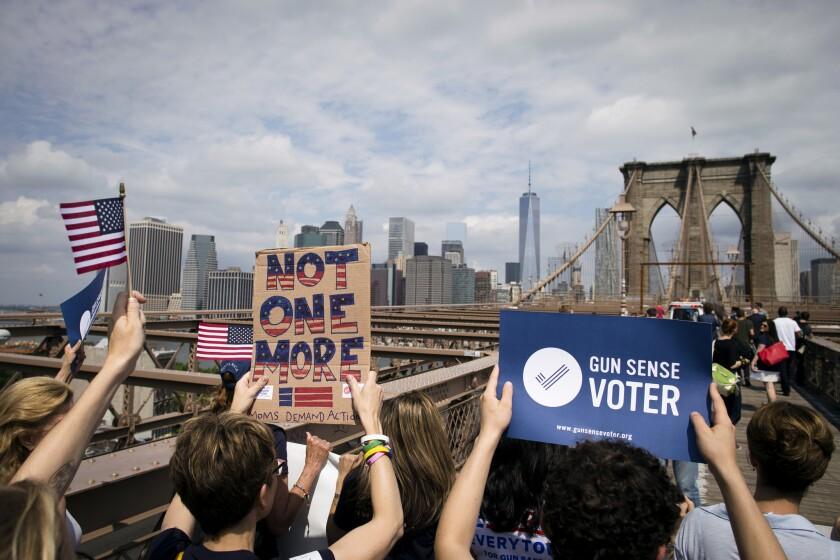 Gun control rally in Brooklyn