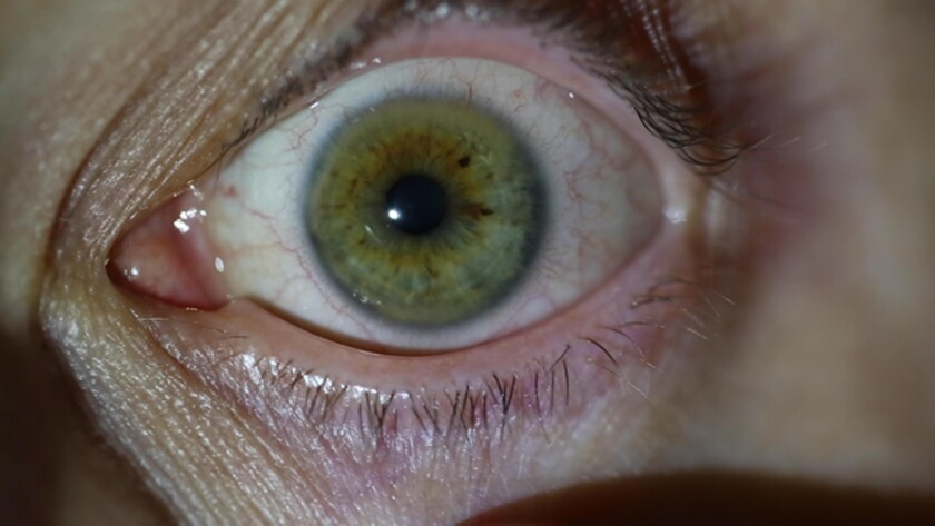 A still from a video work by Los Angeles artist MPA shows an eye staring into the camera
