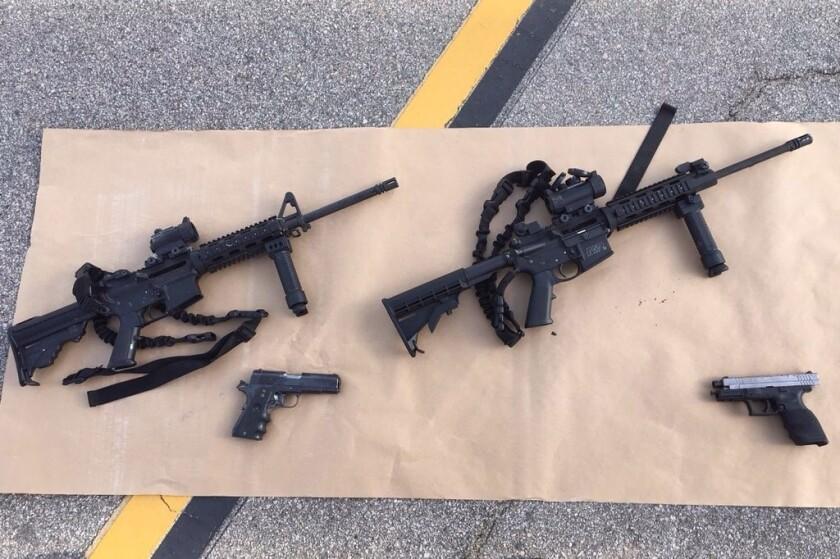 New gun bans proposed