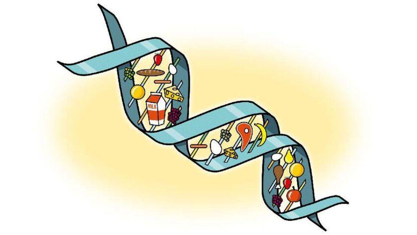 Un nuevo estudio detectó que la composición genética de una persona no influye en la pérdida de peso al seguir una dieta baja en grasas o baja en carbohidratos (Jack Gallagher).