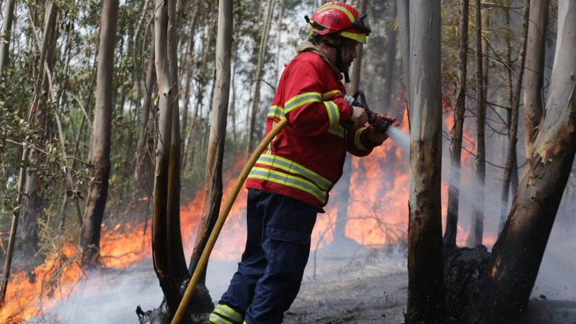 epa06039526 A fireman fights a fire that rages near Avelar in the municipality of Ansiao, Portugal,