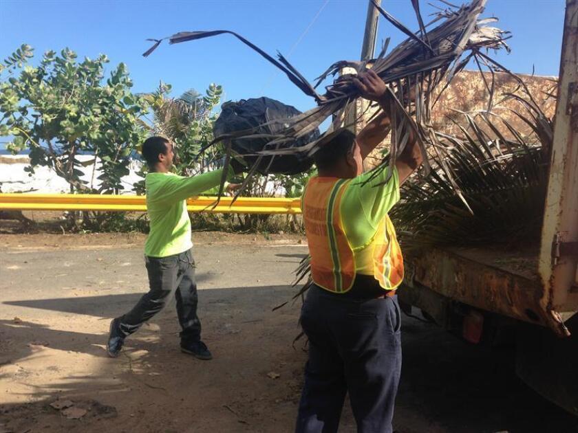 El Departamento de Recursos Naturales y Ambientales (DRNA) de Puerto Rico, el municipio de Loíza -norte de la isla- y vecinos de la comunidad colaboraron hoy en la limpieza del Bosque Estatal de Piñones, situado en ese pueblo. EFE/Archivo