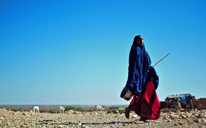 A Somali woman trudges through the arid landscape in northeastern Somalia, amid warnings the country could confront famine later this year.