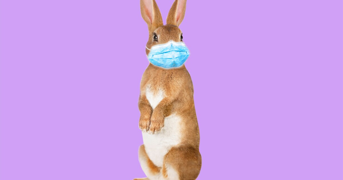 Ways to make the most of Easter in isolation