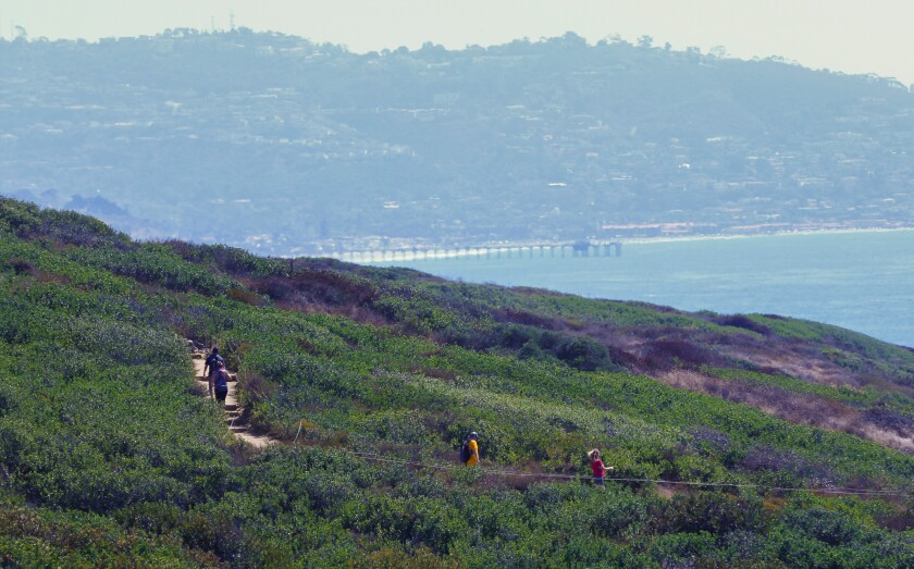 Hikers explore the trails at Torrey Pines State Reserve in San Diego County.