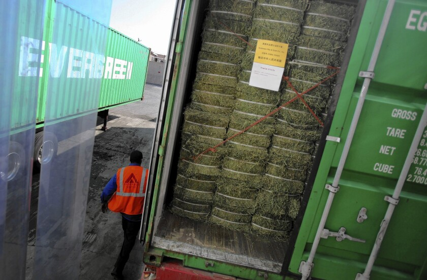 Half-ton bales of hay are stacked at Anderson Hay & Grain Co., a major alfalfa exporter that operates a warehouse the size of two Costco stores near the ports of Los Angeles and Long Beach.