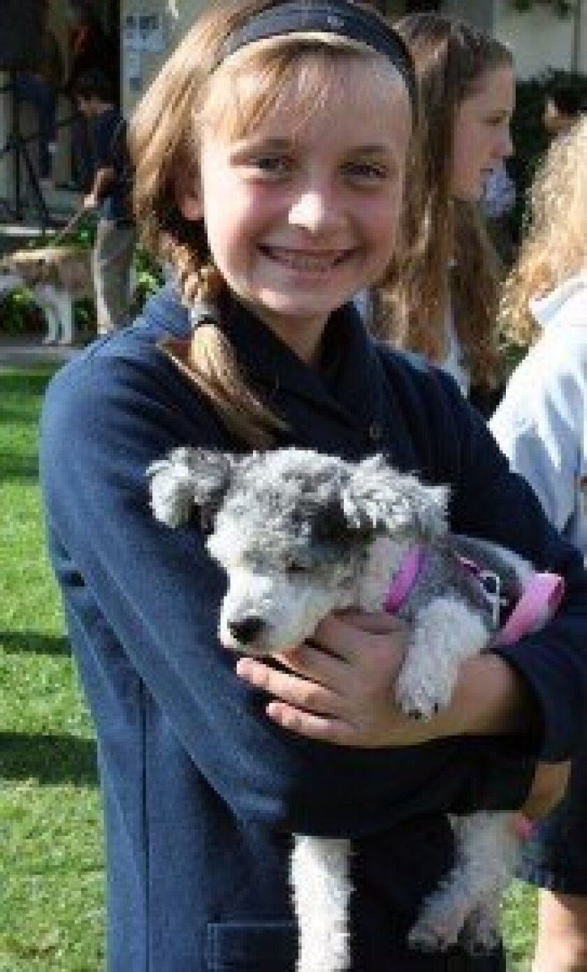 Shannon Buss, seventh grade, gets her dog blessed.