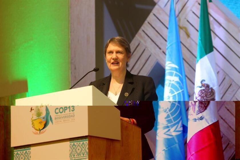 Los países que buscan erradicar la pobreza deben invertir más en la conservación de la biodiversidad, ya que es una apuesta segura para aumentar los índices de desarrollo humano, defendió hoy la administradora del Programa de las Naciones Unidas para el Desarrollo (PNUD), la neozelandesa Helen Clark. EFE/ARCHIVO