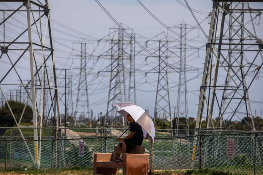 A man sits under high power lines in Redondo Beach.