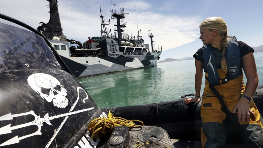 Sea Shepherd activists work to remove gill nets from a protected area in the Gulf of California, which is the habitat of the highly endangered vaquita porpoise.