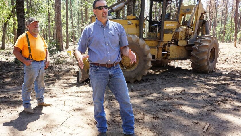 Assemblyman Brian Dahle (R-Bieber), center, explains how thinning crowded trees will keep the forest healthy as logger Lonnie Blunt looks on. Dahle was elected Thursday as Assembly Republican leader.