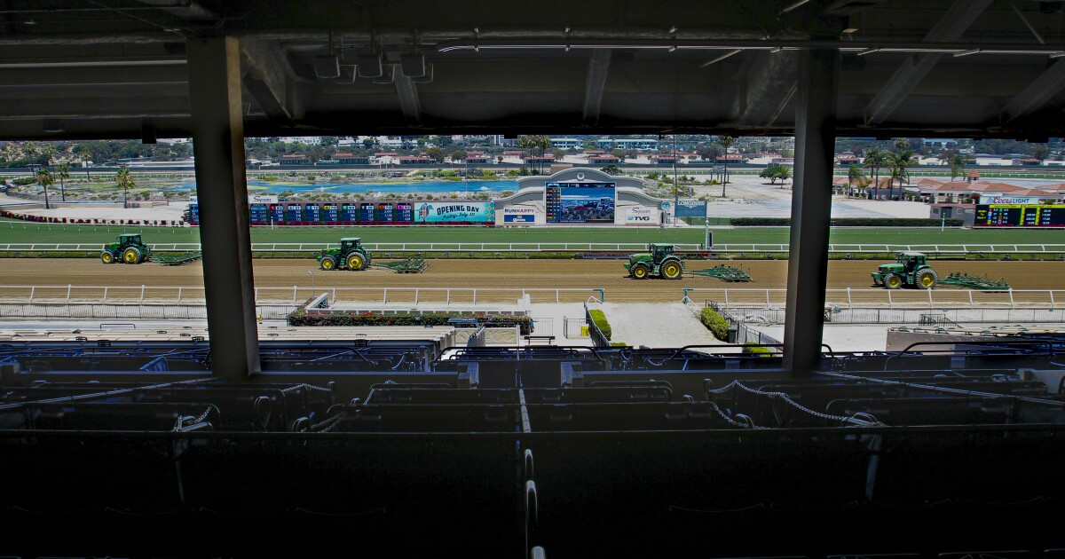 Horse racing newsletter: Derby prep race today at Del Mar