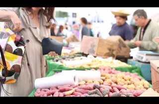 Market Fresh: New Potatoes