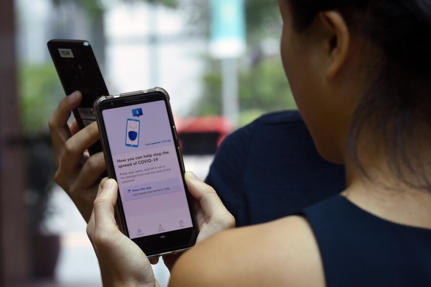 Government staff demonstrate Singapore's new contact-tracing smartphone app called TraceTogether.