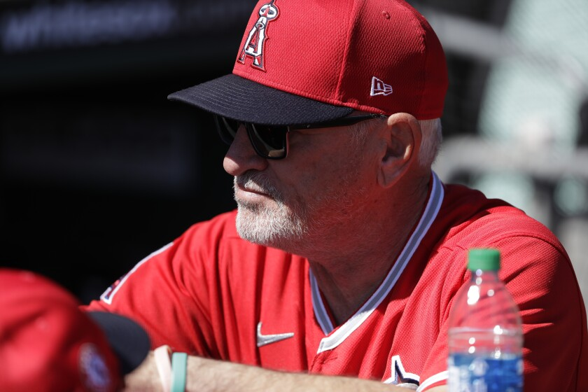 Angels manager Joe Maddon looks on before a spring training game against the Dodgers on Feb. 26 in Glendale, Ariz.