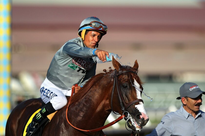 California Chrome, ridden by Victor Espinoza, returns to winner's circle after Saturday's San Diego win.