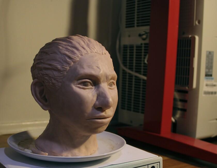 Denisovan skull