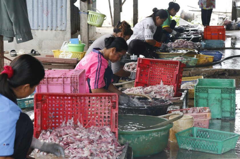 Seafood workers in huts prepare seafood in Thailand. Thailand, Malaysia and Venezuela have become among the worst offenders in trafficking of humans, the US State Department said in its annual human trafficking report released late this week.