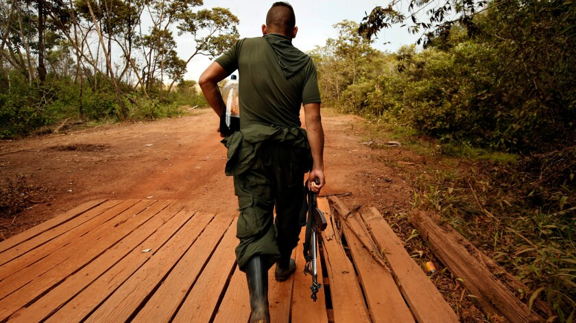 A FARC member carries his weapon along with a bottle of soda, as he leaves camp.