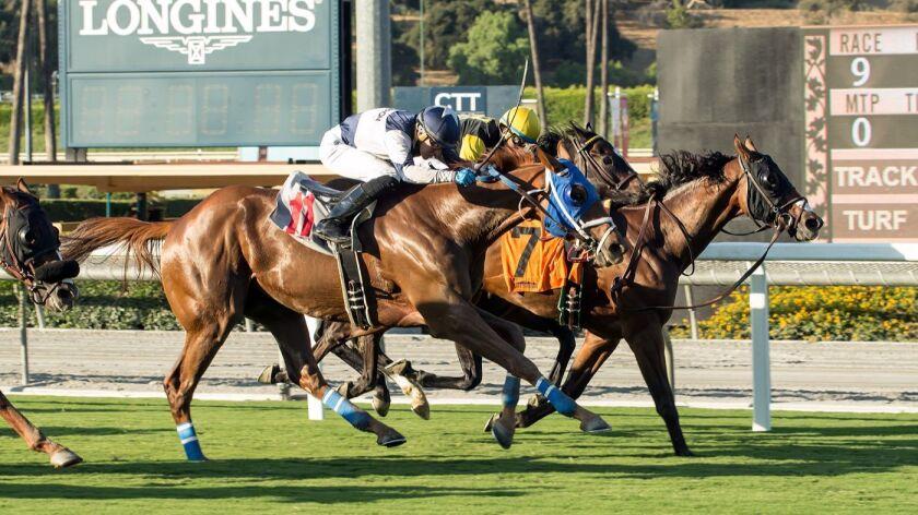 Racing! Today is a big day at Santa Anita - Los Angeles Times