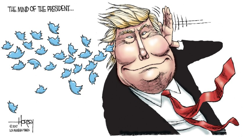 Donald Trump has tweets on the brain.