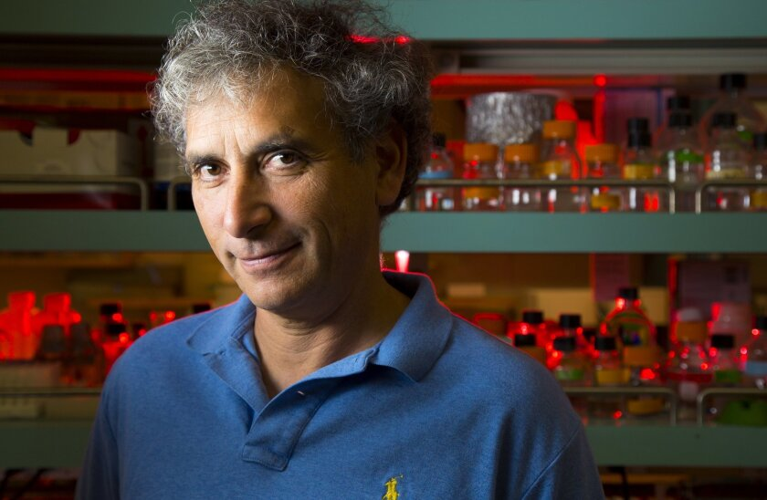 Ethan Bier, UCSD professor of cell and developmental biology, helped apply gene drive technology to produce a malaria-resistant mosquito.