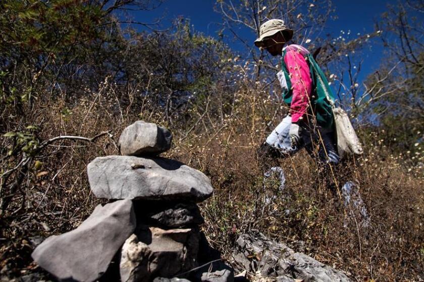 Una brigada compuesta por más de 200 personas, dedicada a la búsqueda de personas en el estado de Guerrero, será la más grande en la historia de México al triplicar el número de operativos, informó hoy la Cuarta Brigada Nacional de Búsqueda de Personas Desaparecidas. EFE/Archivo