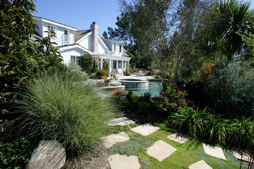 Low-water trees and shrubs create a screen in the yard of Maury and Heather Callaghan.