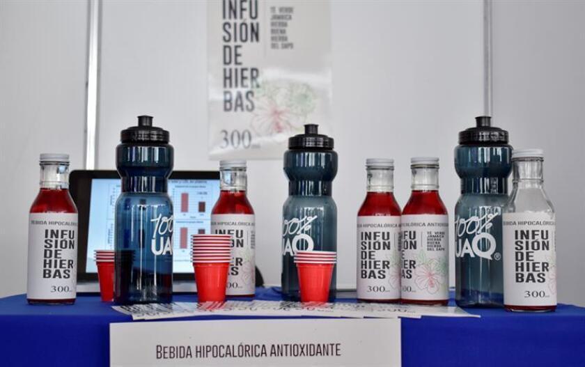 Advierten presencia de microplásticos contaminantes en alimentos mexicanos